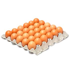 huevos-a-rojo-cubeta-30-und